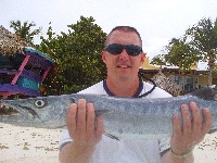 A big Barracuda